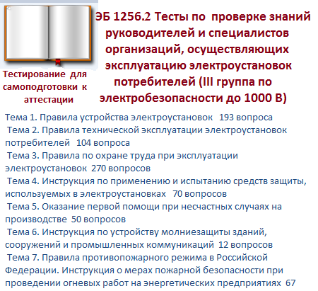 ЭБ 1256.2 (февраль 2016г) Электробезопасность (III гр. до 1000 В)